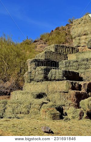 A Stack Of Fresh Green Baled Hay Is Stacked Against The Backdrop Of A Steep Hill