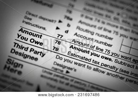 US Tax forms focused on the Amount You Owe line