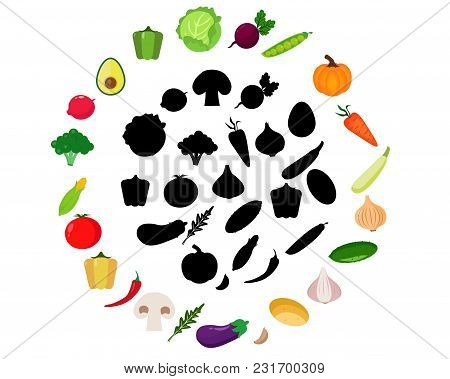Find The Correct Shadow, Education Game For Children: Vegetables