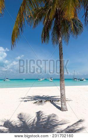 Tropical Paradise Beach Playa Norte On Isla Mujeres, Mexico