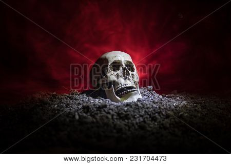 Frontview Of Human Skull Open Mouth On Dark Toned Foggy Background. Horror Concept.