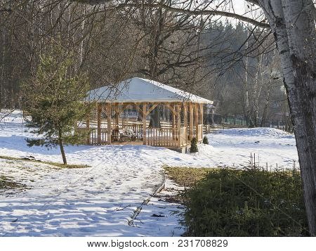 Big Wooden Alcove Gazebo With Bench In Winter Garden Snow Birch And Spruce Tree In Afternoon Sunligh