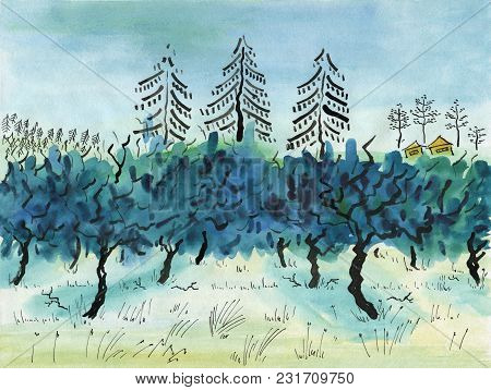Apple Orchard In Winter Against The Background Of Spruces, Pines And Village Huts. Watercolor Painti