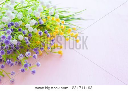 Wildflower On Pink Wood Background With Copy Space.