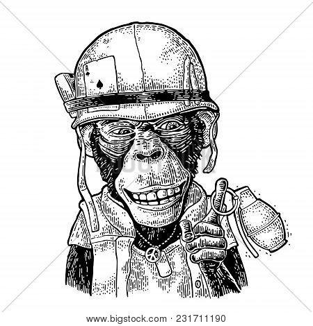 Monkey In Soldier Helmet Holding Grenade. Vintage Black Engraving Illustration For Poster And T-shir