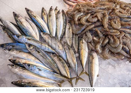 Different Fresh Fish On The Fishpond Bench