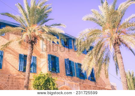 Southern House With Blue Colored Windows Near Palm Trees Toned Ultraviolet