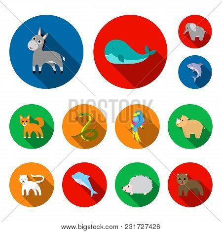An Unrealistic Animal Flat Icons In Set Collection For Design. Toy Animals Vector Symbol Stock Illus