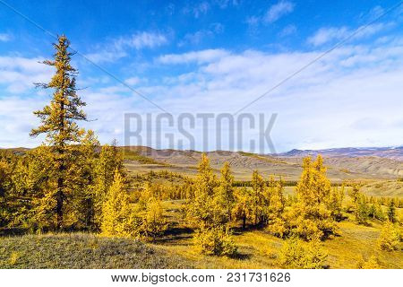 The Landscape Of Altai Mountains With North-chuya Ridge , In Background, Siberia, Altai Republic, Ru