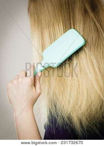 Everyday Hygiene And Care About Good Look. Back View Of Blonde Casual Girl Combing Her Long Straight