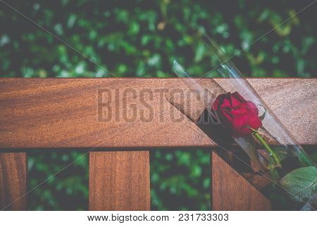 A Single Rose On A Memorial Bench In A Cemetery With Copy Space