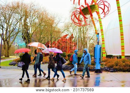 March 8, 2018 In Seattle, Wa:  People Walking In The Rain With Umbrellas Besides Sunflower Art Sculp