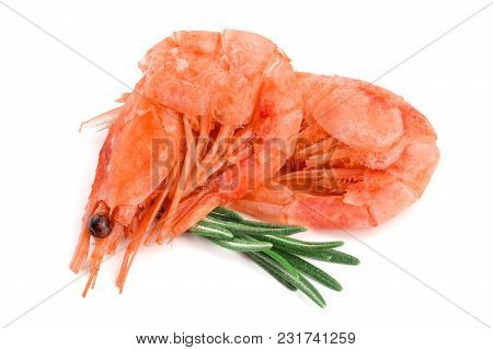 Red Cooked Prawn Or Shrimp With Rosemary Isolated On White Background.