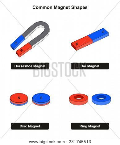 Common Magnet Shapes examples including horseshoe bar disc and ring with north and south poles for physics science education