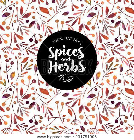 Herbs And Spices Logo. Watercolor Pattern Of Herbs And Spices. Packing Or Wrapping Paper.