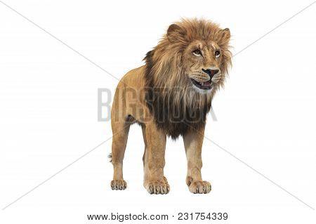 Lion Animal Beige Massive Carnivore. 3d Rendering