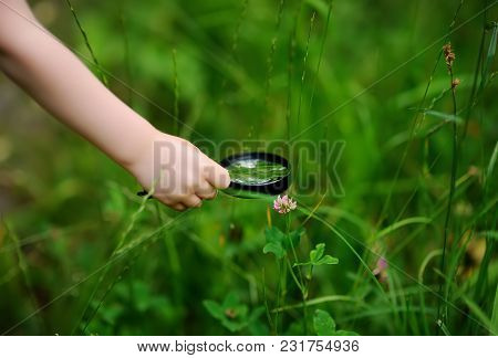Close-up Photo Of Kid Exploring Nature With Magnifying Glass. Little Boy Looking At Tree With Magnif
