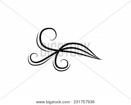 Swirl, Scroll Element. Vintage Page Decoration Element. Vector Flourish Decor Element.