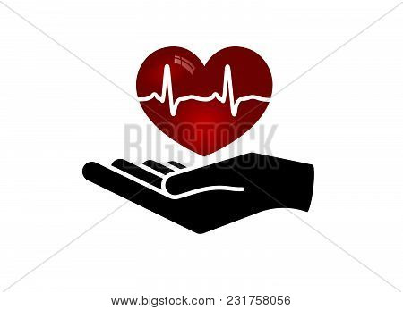 Heart In Hand. Giving Heart Logo Template For Transplant ,organ, Donation, Charity, Health, Voluntar
