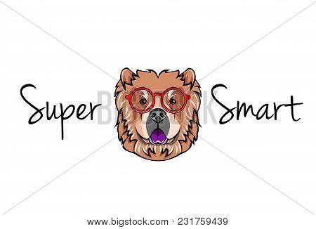 Chow Chow Dog Geek. Dog In Smart Glasses. Super Smart Inscription. Vector Illustration.