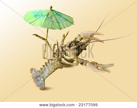A crayfish is on the vacation.