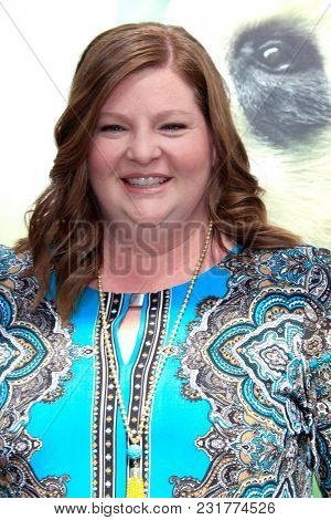 LOS ANGELES - FEB 17:  Heather Brooker at the World Premiere Of