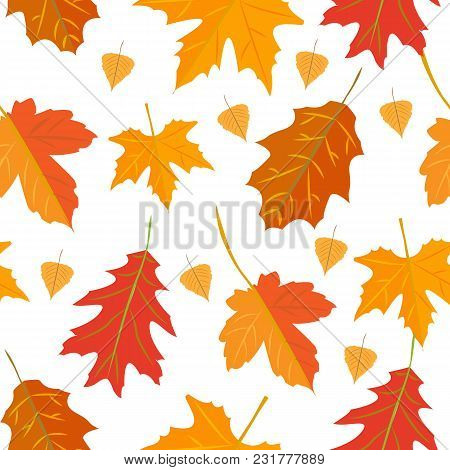 Seamless Vector Pattern With Colorful Oak Autumn Leaves. Season Holidays Decoration, Wrapping Paper,
