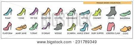 Female Shoes Collection Of All Designs And Models. Stylish Womens Footwear On Heels And Flat Sole Fo