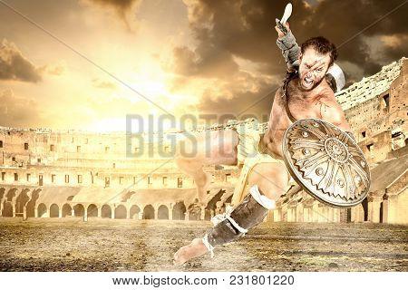 Gladiator In The Arena