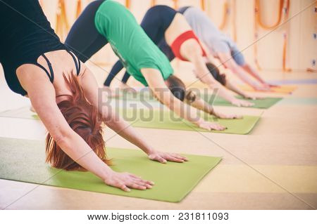Group Of People Doing Yoga Downward Facing Dog Pose - Adho Mukha Svanasana On Mats At Studio