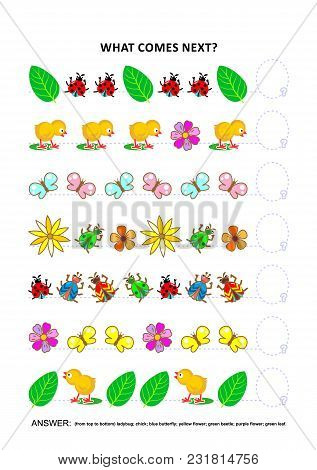 Spring Or Summer Themed Educational Logic Game Training Sequential Pattern Recognition Skills With C