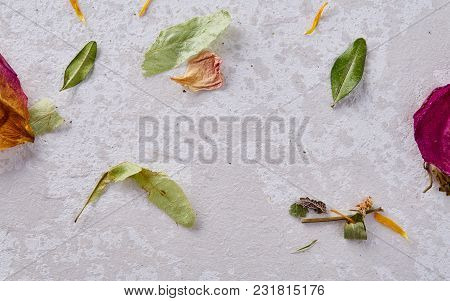 Set Of Assorted Petals Isolated On Wooden Background, Close-up, Overhead, Selective Focus, Flat Lay.