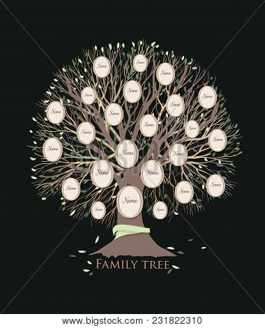 Stylized Family Tree Or Pedigree Chart Template With Branches And Round Photo Frames Isolated On Bla
