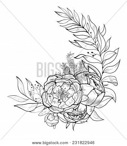 Hand Drawing And Sketch Peony Flower. Black And White With Line Art Illustration.