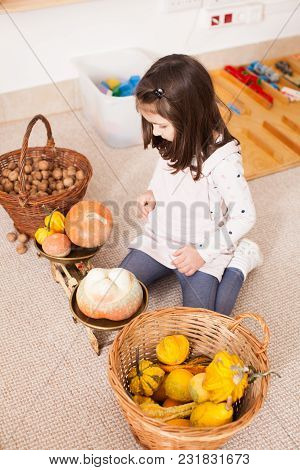 Cute Girl Are Weighing Some Nuts And Pumpkins In The Kindergarten