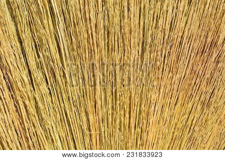 Stripes Of Grass Arranged In A Broom. Capture A Close Up Broom.