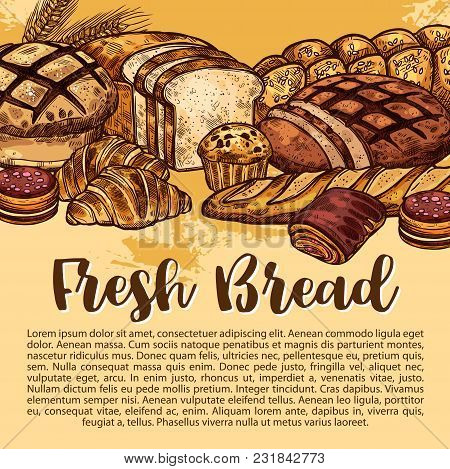 Bakery Shop Sketch Poster Of Bread And Baked Pastry Desserts. Vector Design Template Of Wheat Loaf A