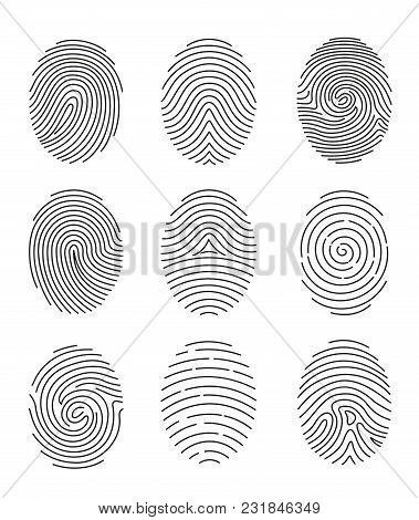 Vector Illustration Set Of Nine Black Line Fingerprint Types On White Background