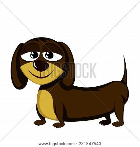 Little Dog - Lovely Little Dachshund (happy Girl)