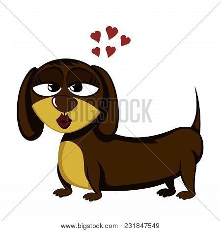 Little Dog - Lovely Little Dachshund (seductive Female)