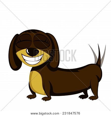 Little Dog - Lovely Little Dachshund (girl)