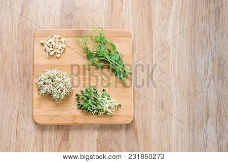 Different Types Of Micro Greens On Wooden Background. Healthy Eating Concept Of Fresh Garden Produce