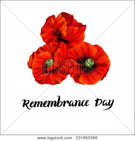 Remembrance Day Greeting Card. Beautiful Realistic Red Poppy Flower On Red Background With Lettering