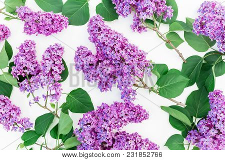 Floral Composition With Lilac Flowers Branches On White Background. Flat Lay, Top View. Flower Patte