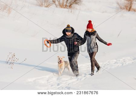 Couple Is Walking With Labrador Dog In Snow In Winter, Playing With Ring Toy. Snow Is Flying Around,