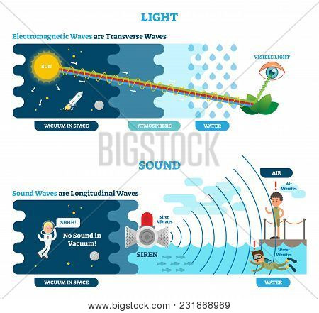 Longitudinal And Transverse Wave Type, Vector Illustration Scientific Diagram With Wave Structure An