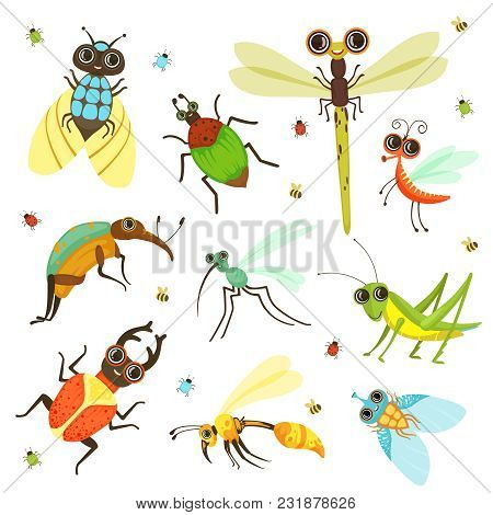 Bugs, Butterfly And Other Insects In Cartoon Style. Insect Butterfly And Bug, Beetle And Dragonfly.