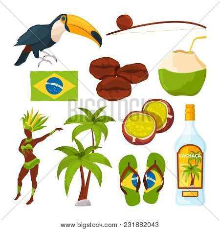 Vector Collection Of Different Brazilian Symbols. Brazilian Palm And Carnival Woman, Toucan And Cock