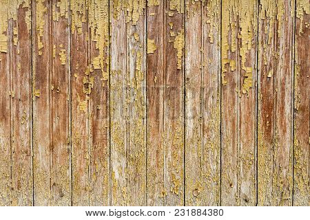 Peeling Yellow Paint On Weathered Wood Texture. Abstract Architecture Background
