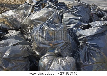 Sacks Of Garbage During Spring Cleaning In The Spring
